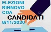 elezioni 2020